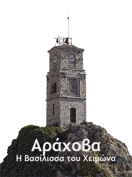 roloi_trans